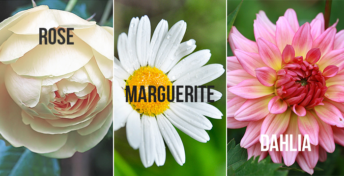 bouquet-mariage-automne
